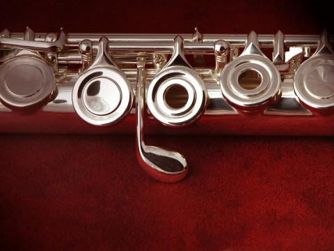 Di Zhao 400bof Flute